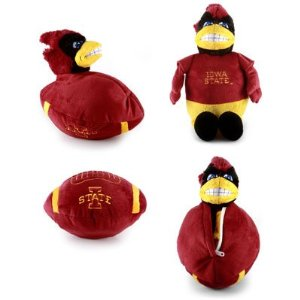 Iowa State Apparel