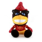 Top 10 – Iowa State Cyclones Gifts for Kids